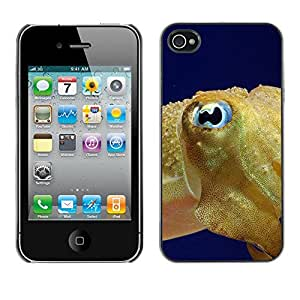 Qstar Arte & diseño plástico duro Fundas Cover Cubre Hard Case Cover para Apple iPhone 4 / iPhone 4S / 4S ( Fish Blue Eye Golden Ocean Swim Blue Sea)
