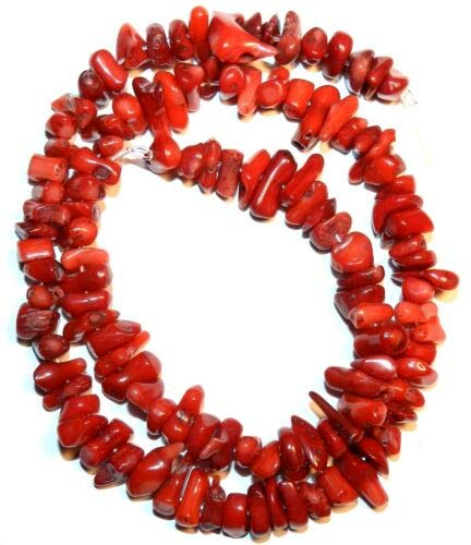 Coral Bracelet Red Chip (CRL228 Red Bamboo Coral Medium 8mm Gemstone Chip & Cupolini Branch Beads 15'' Crafting Key Chain Bracelet Necklace Jewelry Accessories Pendants)