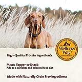 Wellness CORE Simply Shreds Natural Grain Free Wet