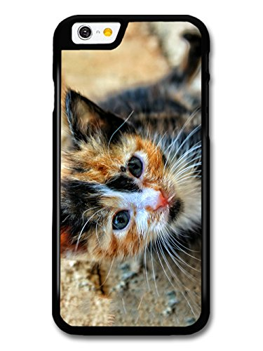 Cute Funny Kitten Cat Photograph Design case for iPhone 6 6S