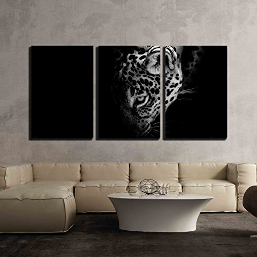 wall26 - 3 Piece Canvas Wall Art - Jaguar Portrait - Modern Home Decor Stretched and Framed Ready to Hang - 24