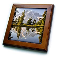 Danita Delimont - Mountains - USA, Washington, Mt. Rainier reflecting in a tarn at sunset. - 8x8 Framed Tile (ft_205345_1)