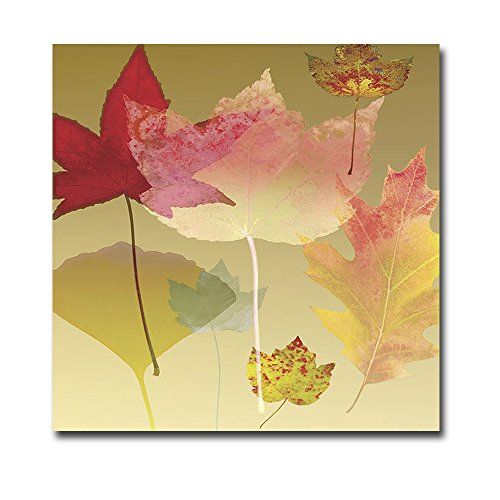 Leaf Counterpoint by Robert Mertens Premium Gallery-Wrapped Canvas Giclee Art (Ready to Hang) Robert Mertens Leaf
