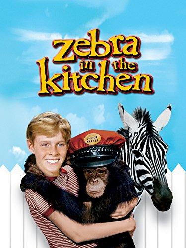 Zebra in the Kitchen