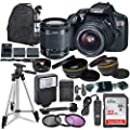 Canon EOS Rebel T6 Digital SLR Camera with Canon EF-S 18-55mm is STM Lens + Sandisk 32GB SDHC Memory Card + Accessory Bundle