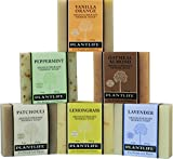 Plantlife Top 6 Natural Aromatherapy Herbal Soaps Made with 100% Pure Essential Oil For Sale