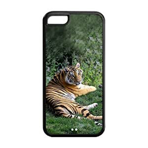 Cool Funny Tiger Hot Fashion Design Case for Iphone 5C TPU Style 02