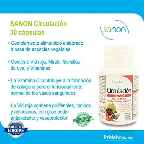 SANON - SANON Circulación 30 cápsulas de 515 mg: Amazon.es: Salud y cuidado personal