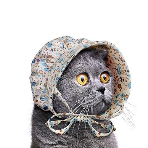 Accoutrements Cat Bonnet]()