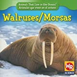 Walruses/Morsas, Valerie J. Weber, 0836895789