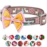 Blueberry Pet 14 Patterns Moments of Peace Happy Reindeer Christmas Designer Dog Collar, Medium, Neck 14.5''-20'', Adjustable Collars for Dogs