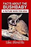 Facts About The Bushbaby (A Picture Book For Kids) (Volume 80)