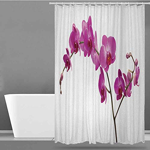 ONECUTE Kids Bathroom Shower Curtain,Magenta Wild Orchids Petal Florets Branch Romantic Flower Exotic Plant Nature Artistic Print,Single stall Shower Curtain,W48x72L Violet