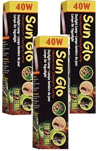 Image of Exo Terra Daytime Heat Lamps, 40W (3 Pack)