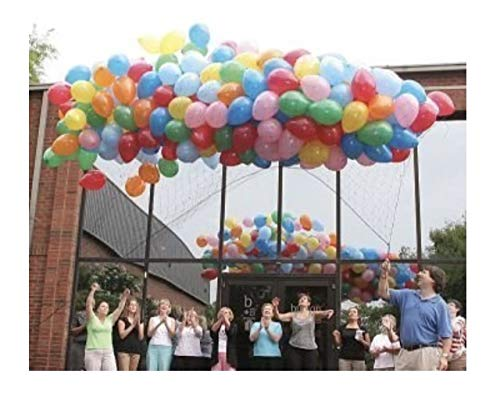 (Balloon Release or Drop Net, Holds 500 9