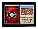 NCAA University of Georgia 12x18 Framed Logo and Stadium Print