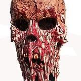 LTOOLA Halloween Skull Mask, Haunted House Secret Room, Bloody Messenger, Horror Hood, Mask, Movie Props, Horror