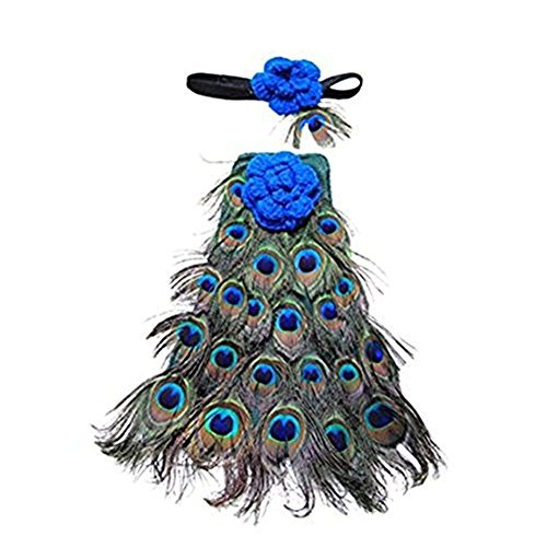 Pinbo (Peacock Costume Pictures)