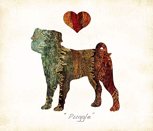 (Puggle Dog Breed Art Print by Dan Morris )