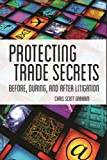 img - for Protecting Trade Secrets: Before, During and After Litigation book / textbook / text book