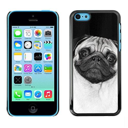 Omega Case PC Polycarbonate Cas Coque Drapeau - Apple iPhone 5C ( Cute Happy Pug Dog )