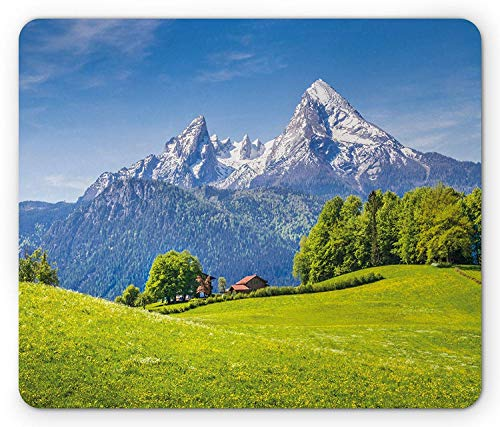 Modern Mouse Pad, Panoramic View in Alps with Fresh Green Meadow and Blooming Flowers Nature Image, Standard Size Rectangle Non-Slip Rubber Mousepad, Green Blue,9.8 x 11.8 x 0.118 Inches