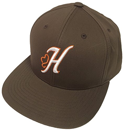 21bea38c5a8a HOOey Brand, Jack, Brown Snapback Hat - 1788T-BR