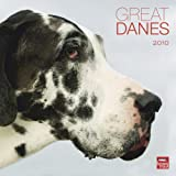 Great Danes 2010 Square Wall (Multilingual Edition)