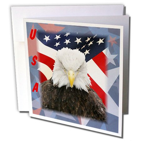 - 3dRose Florene Patriotic - Bald Eagle On USA Flag and Stars - 6 Greeting Cards with envelopes (gc_39038_1)