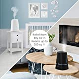 Pure Enrichment Hume Max - Easy Top Fill Ultrasonic Cool Mist Humidifier, 3.7 L (1 Gallon) Tank, 3 Mist Settings + Auto Shut-Off Timer - Ideal for Large Bedrooms, Baby Nurseries and Offices