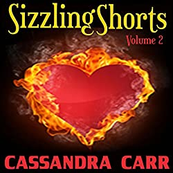 Sizzling Shorts, Volume 2
