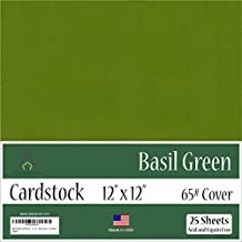 Basil Green Cardstock - 12 x 12 inch - 65Lb Cover - 25 Sheets