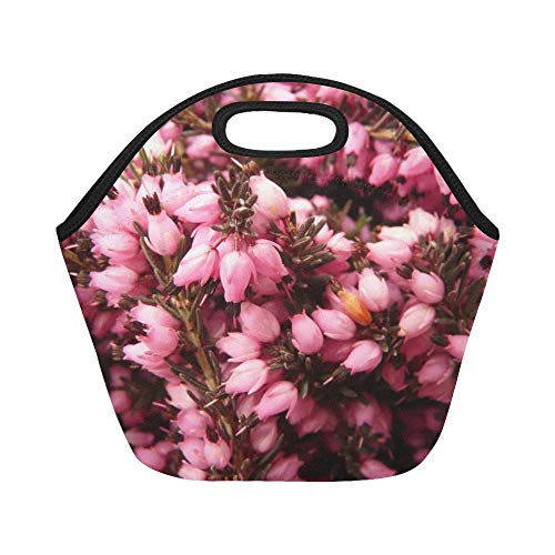 - Insulated Neoprene Lunch Bag Heather Erika Flower Bloom Plant Garden Pink Large Size Reusable Thermal Thick Lunch Tote Bags For Lunch Boxes For Outdoors,work, Office, School