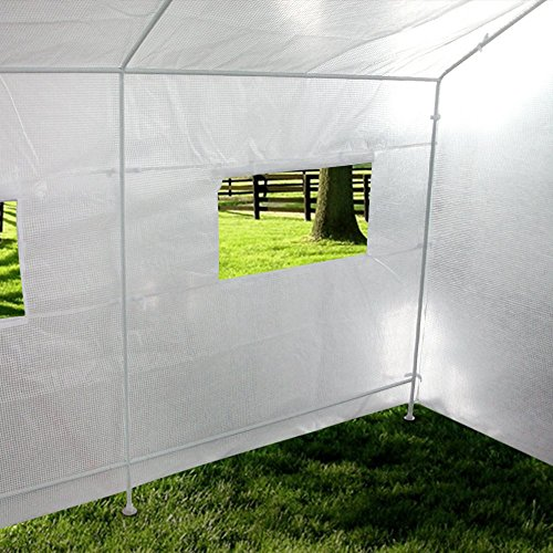 Large Portable Greenhouse : Quictent portable greenhouse large green garden hot house
