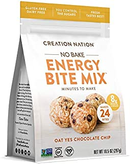 """product image for ENERGY BITE MIX ~ No-bake, Minutes to Make! Makes 24 ENERGY BALLS & BITES. """"Oat Yes Chocolate Chip"""" is Vegan, Soy Free, Gluten Free, Purity Protocol"""