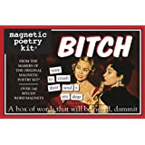 Bitch-Magnetic Poetry Kit