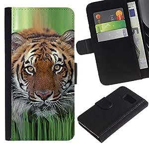 iKiki Tech / Cartera Funda Carcasa - Tiger Grass Spring Animal Nature Hunting - Samsung Galaxy S6 SM-G920