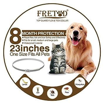 1c4a02615c92 FRETOD Collares Antiparasitario para Perros y Gatos - 65cm Collares  Antipulgas y Garrapatas para Perros Pequeño Mediano Grandes  Amazon.es  Productos  para ...