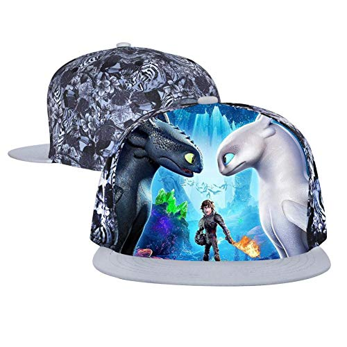 Tooth-Less Dragon Unisex Adjustable Baseball Cap Flat Hip Hop Hats Trucker Sun Caps Gray]()