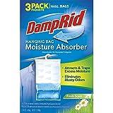 #6: DampRid Hanging Bag