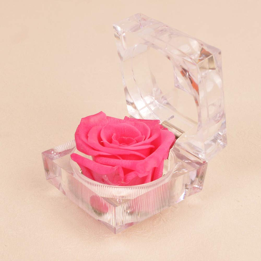 AESTHING Handmade Preserved Fresh Flower Rose Acrylic Crystal Ring Box,Romantic Gifts to Women,Her,Sister,Girls Valentines Day,Christmas,Thanksgiving Day,Wedding Red