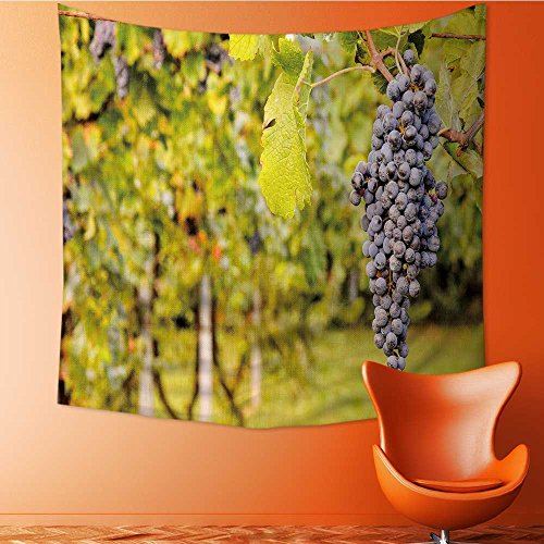 AuraiseHome Polyester Tapestry Wall Hanging Photo Picture of a Beautiful Grape Fruit Vineyard Ready to Produce Wall Decor for Bedroom Living Room Dorm63W x 63L Inch