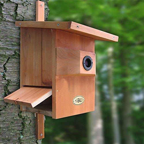 House Sparrow Nest Box (Medium Size Bird - Starling Nesting Wooden Bird Box)