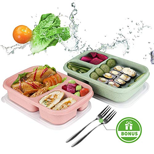 (Bento Lunch Box,Food Storage Containers with Airtight Lids, 3 Compartment Plastic Divided Food Storage Container Boxes for Kids & Adults)