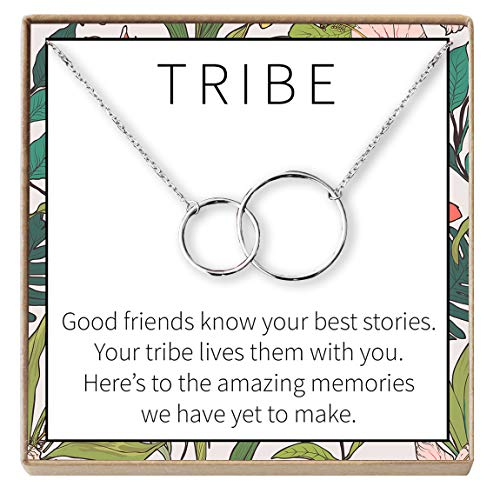(Dear Ava Necklace: BFF, Long Distance, Friends Forever, 2 Interlocking Circles (Silver-Plated-Base, NA))
