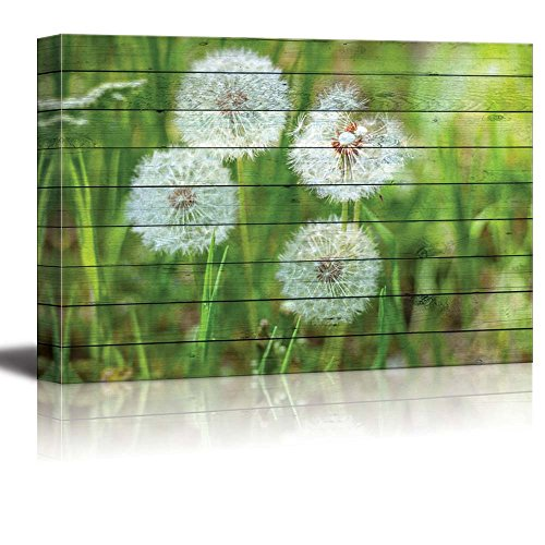 Dandelions on Green Lawn Over a Wood Panel Texture