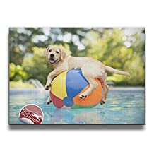 All I Need Is Football And My Dog Sign None Frame Decorative Painting For Living Room Bedroom