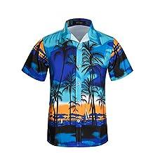 APTRO Men's Hawaiian Shirt Palm Beach Aloha Beach Board Shirt