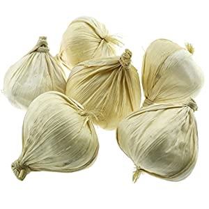 Gresorth 6pcs Artificial White Garlic Decoration Fake Vegetable Home Kitchen Party Holiday Display 31