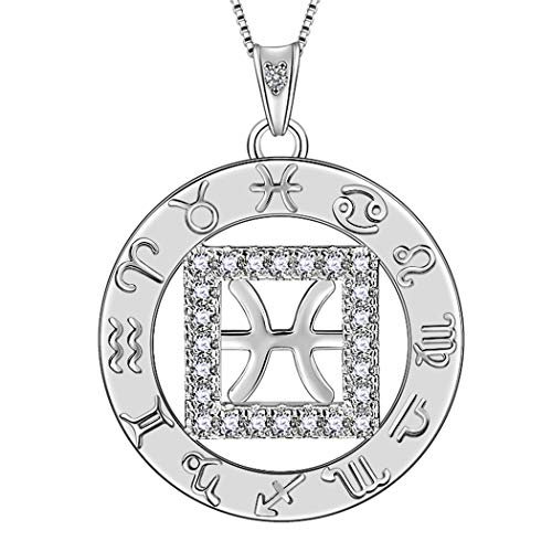 Aurora Tears Pisces Necklaces Zodiac Coin Round Pendant 925 Sterling Silver Women Crystal Cubic Zirconia Round Constellation Pendant Girls Charm Dating Jewelry DP0111Y (Zodiac Pisces Coin)